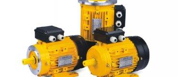 Motores MS EMS para bombas